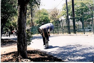 Man on bike with wine barrel on his back