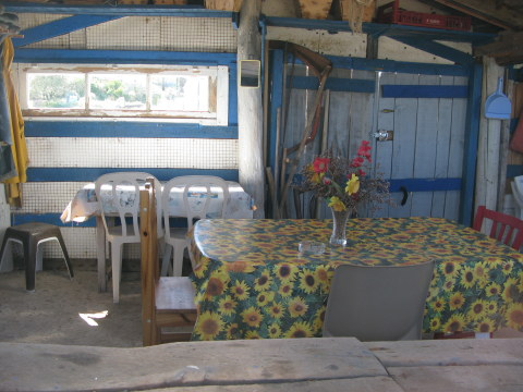Île d'Oléron inside of oyster shack