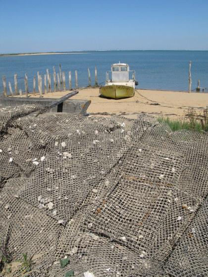 Île d'Oléron piles of mesh sacks