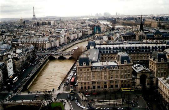View to Eiffel Tower from Notre Dame Cathedral Tower