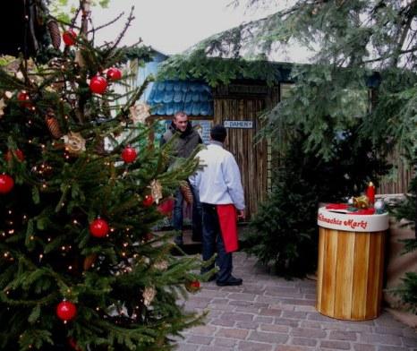 Trier Christmas Market toilets